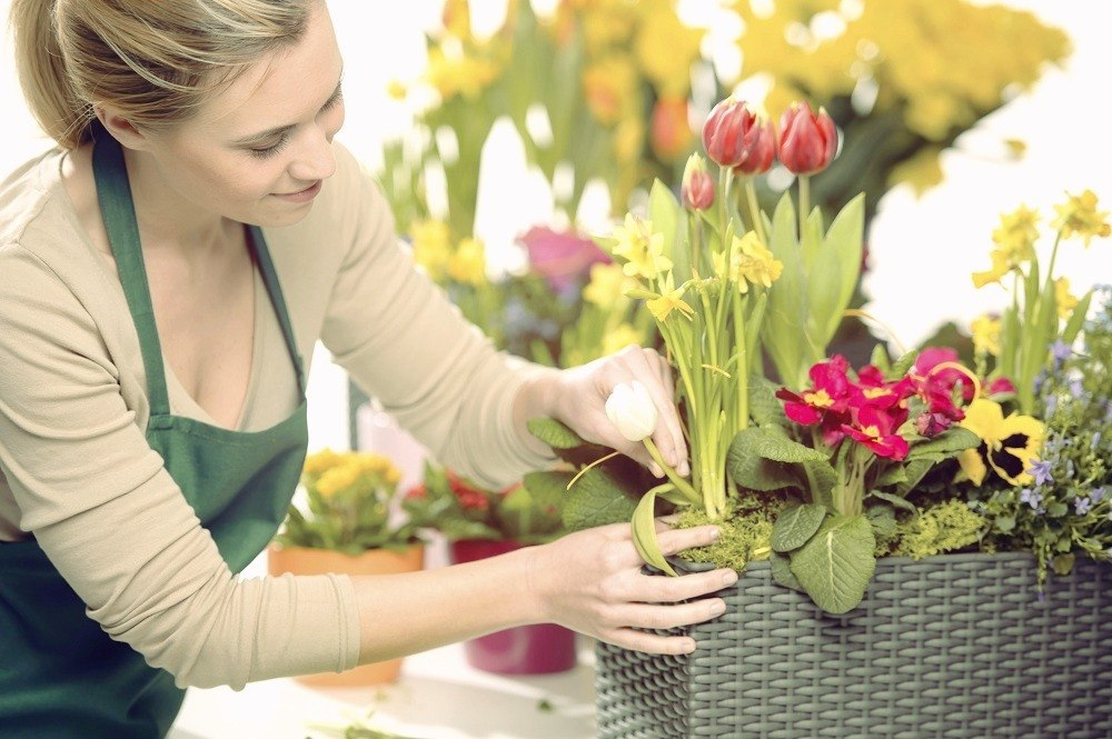 Medicine Hat Florists - Flowers and Bouquets